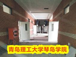 实拍【青岛】理工大学琴岛学院学校教室门定制项目