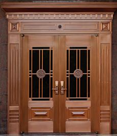 别墅玻璃铜门 TM-7009